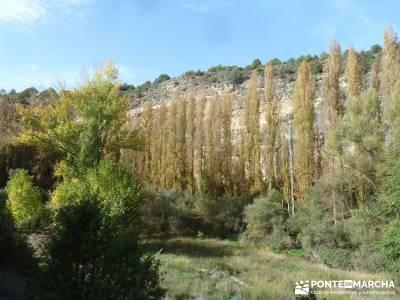 Hoces del Río Duratón - Villa y Tierra de Sepúlveda;nivel bajo